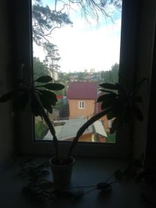 Мини-гостиница Морозовские бани - фото 6