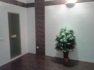 Мини-гостиница Морозовские бани - фото 16