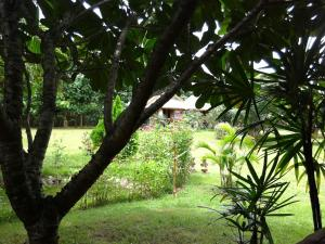 Orange Grove Resort, Rezorty  Pai - big - 30