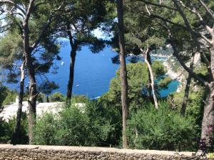 Villa Sospisio C, Villas  Capri - big - 12