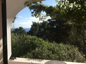 Villa Sospisio C, Vily  Capri - big - 6