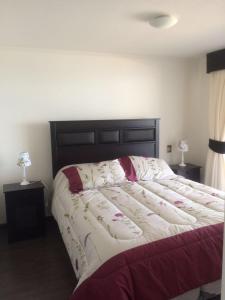 Ana Alfaro Apartments, Апартаменты  Икике - big - 1