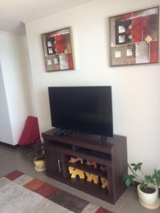 Ana Alfaro Apartments, Апартаменты  Икике - big - 8