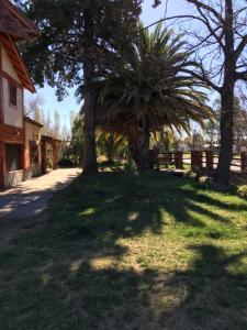 Complejo Rincon del Sur, Lodges  San Rafael - big - 25