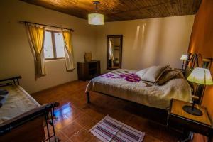 Apacheta Posada Rural, Гостевые дома  Famatina - big - 5