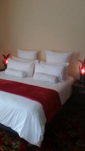 African Phoenix Guest Lodge, Affittacamere  Kempton Park - big - 47