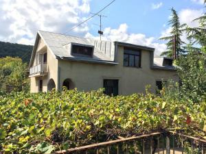 Гостевой дом Шуамта, Телави