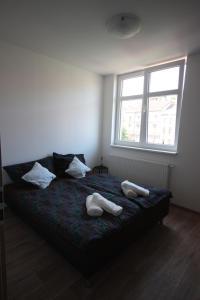 Apartment 11 Starokosirska
