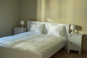 Savoy Apartment, Ferienwohnungen  Timişoara - big - 4