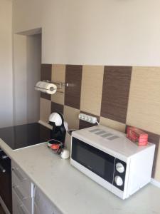 Sophia Apartment, Apartmány  Iaşi - big - 8