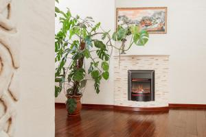 Comfort in Historical Center of Odessa, Apartments  Odessa - big - 7