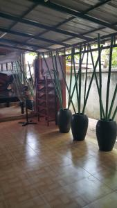 Banyantree New Global Guest House