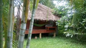 Ing Doi Guest House