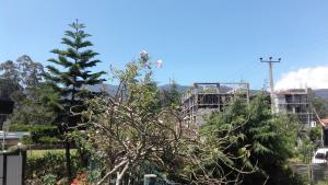 Holiday Residence Bungalow, Мини-гостиницы  Нувара-Элия - big - 8