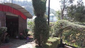 Holiday Residence Bungalow, Hostince  Nuwara Eliya - big - 7
