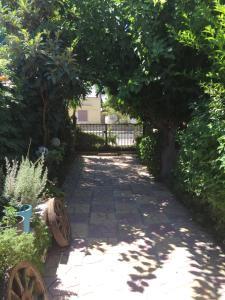 Silias villa