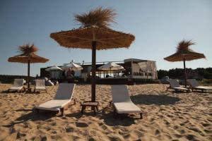 Bulgarienhus Amadeus 15 Apartments, Apartments  Sunny Beach - big - 2