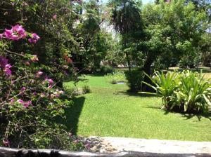 Casa Armonia, Apartmanok  Playa del Carmen - big - 30