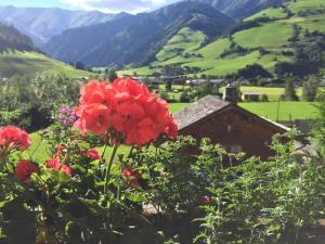 Landhaus Bergheimat