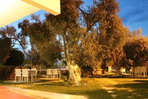 Apart Hotel Ege, Penziony  Ayvalık - big - 60