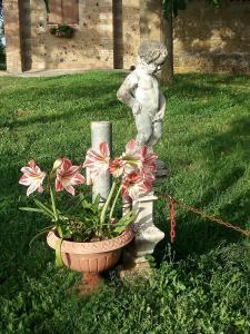 Casa Vacanze Paradiso, Holiday homes  San Lorenzo Nuovo - big - 12