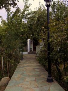 The Pine Tree Village House