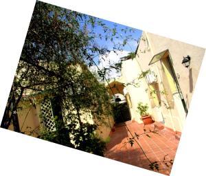 obrázek - La Mia Diletta Oasi