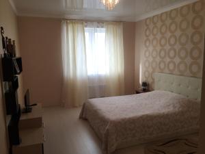 Apartment on Tsentralny