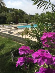 Appart'hôtel et chambres Essentiel Spa