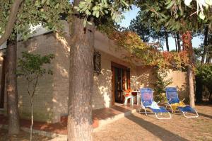 Villa Francesca, Дома для отпуска  Линьяно-Саббьядоро - big - 11