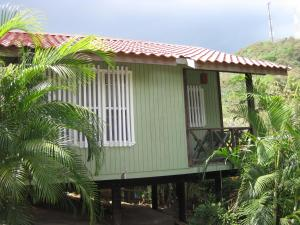 Roatan Backpackers' Hostel, Hostelek  Sandy Bay - big - 31
