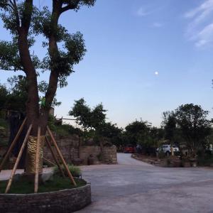 Tangshancai Country Inn, Guest houses  Chongqing - big - 15