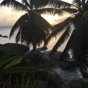 Eden island P146A11 Seychelles