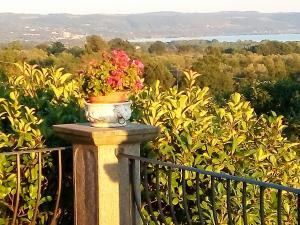Casa Vacanze Paradiso, Holiday homes  San Lorenzo Nuovo - big - 19