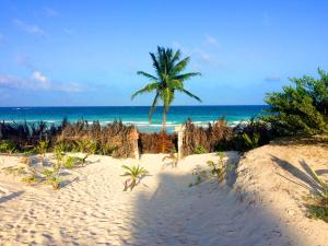 Paradise in Tulum - Villas La Veleta - V1, Holiday homes  Tulum - big - 53