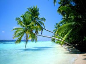 NATTY'S BEACH, Punta Cana, RD.