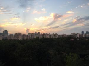 幼木公寓 (Yoom Flat)
