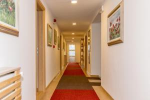 Motel Vila Andrea - фото 15