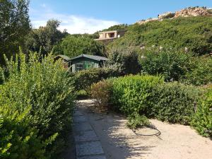 Villa Oliva verde, Villen  Costa Paradiso - big - 80
