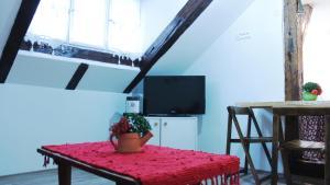 Pule Apartment - фото 6