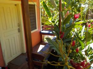 Roatan Backpackers' Hostel, Hostelek  Sandy Bay - big - 21