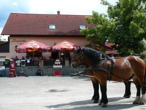 Rodinny Penzion s Restauraci - Hospudka na Navsi