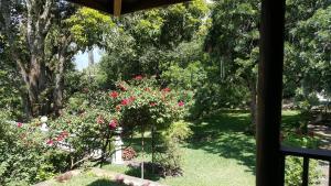 Villas de Atitlan, Villaggi turistici  Cerro de Oro - big - 129