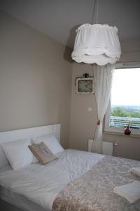 Apartamenty Winnica, Ferienwohnungen  Thorn - big - 7