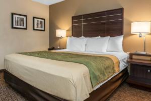 obrázek - Comfort Inn Fort Wayne