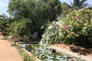 Guruge Villa Habarana, Inns  Sigiriya - big - 23