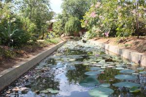 Guruge Villa Habarana, Inns  Sigiriya - big - 22