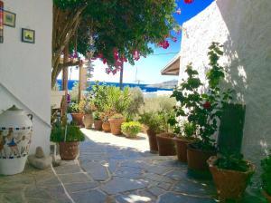 Manos Studios, Ferienwohnungen  Platis Yialos Mykonos - big - 32