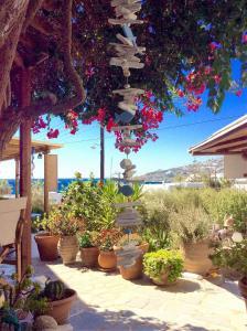 Manos Studios, Ferienwohnungen  Platis Yialos Mykonos - big - 56