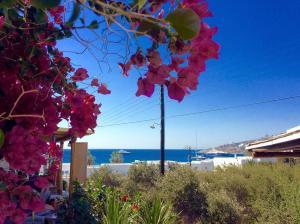 Manos Studios, Ferienwohnungen  Platis Yialos Mykonos - big - 4